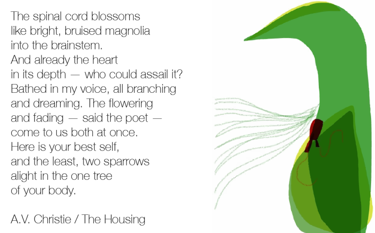 poem and bird